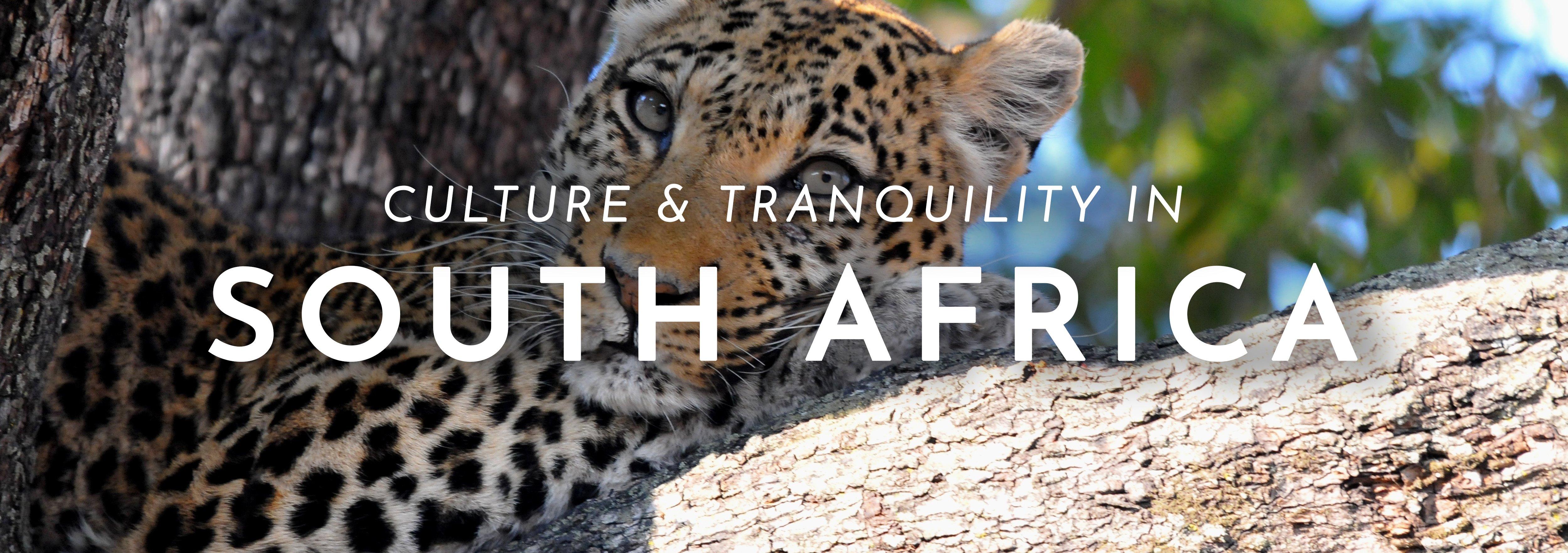 SouthAfricaHeader-1