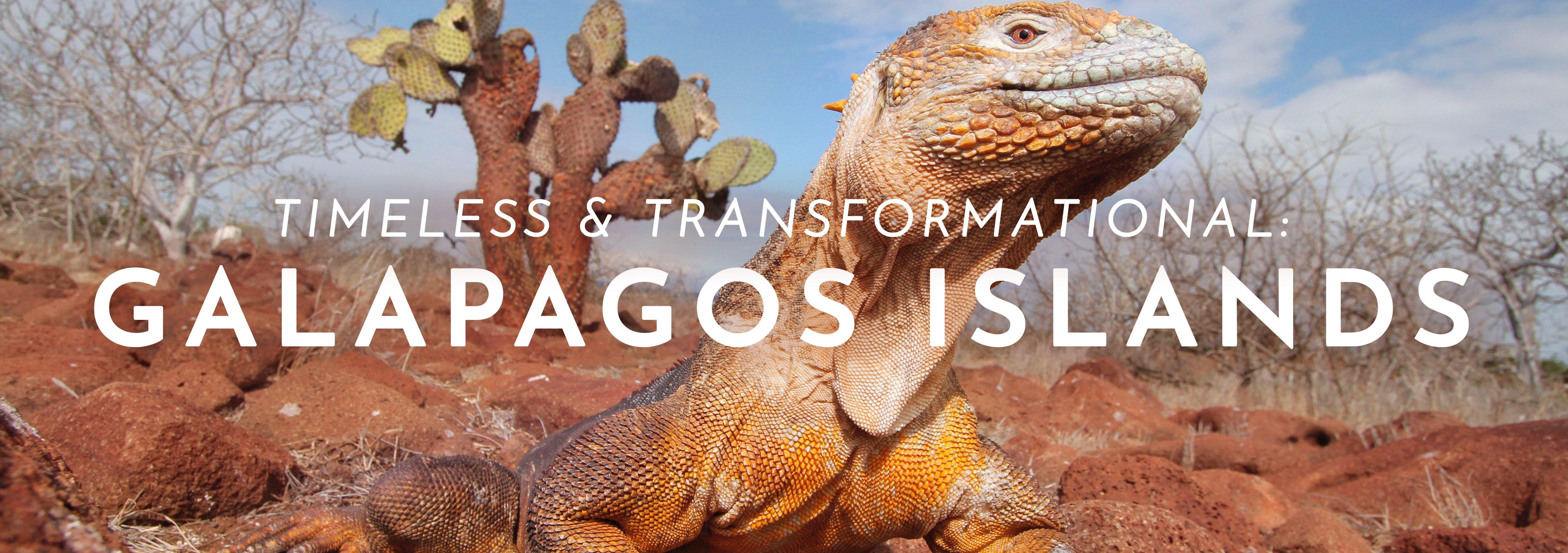 GalapagosHeader