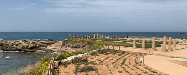 LRaymer Mediterranean blog