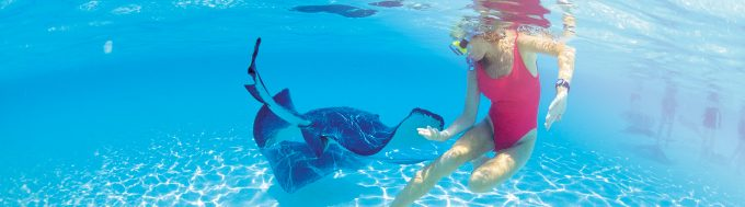 onboard-credit-excursions-snorkeling-with-stingrays