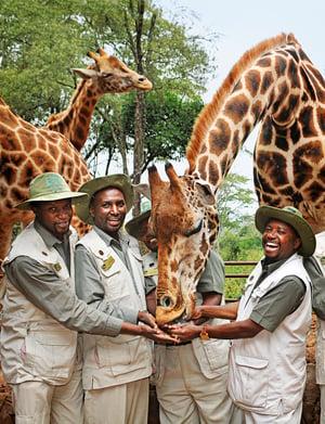 Micato Safaris Team Members - Africa
